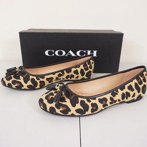 New Coach Benni Ballet Flat Shoes Leopard Print